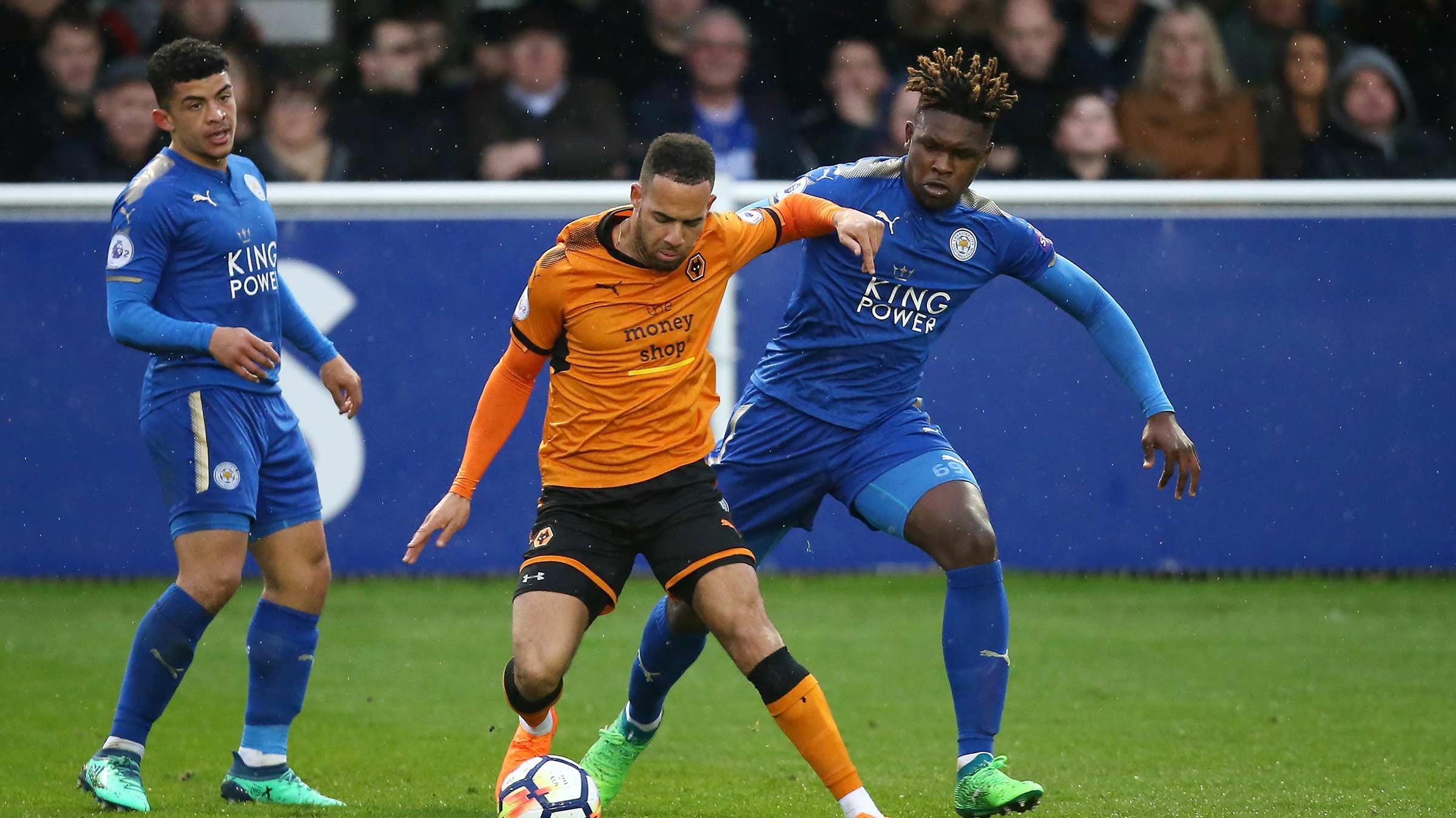 Prediksi Wolverhampton Wanderers vs Leicester City 19 Januari 2019